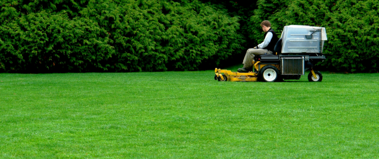 Organic Lawn Care Services and Maintenance Tips Without the Use of Toxic Pesticides and Chemicals