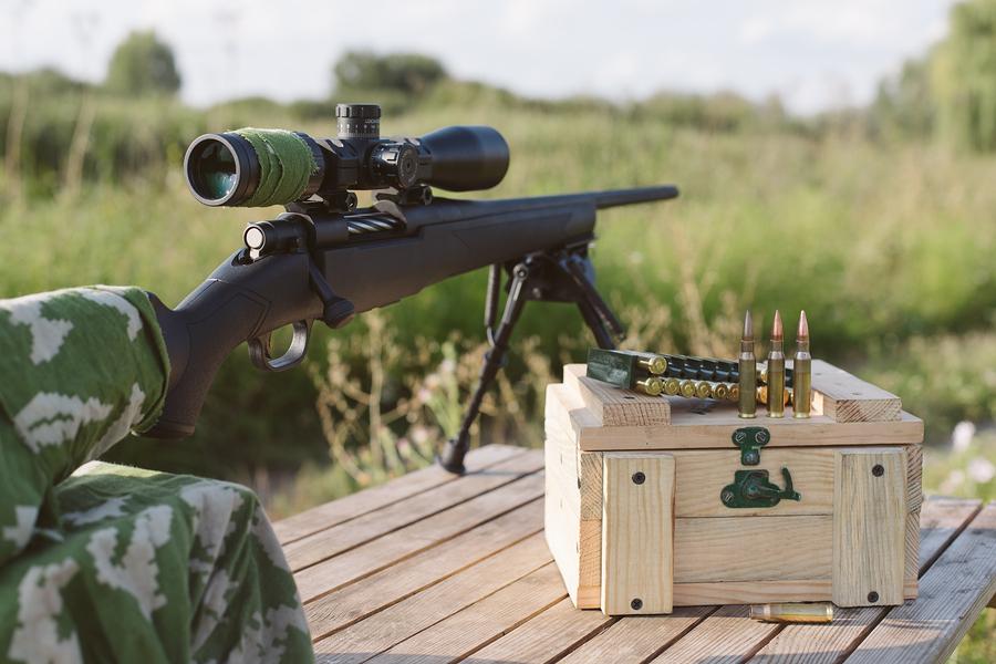 Popular Rifle Scopes