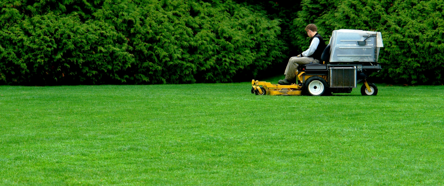 House jovan todorovic for Lawn care companies
