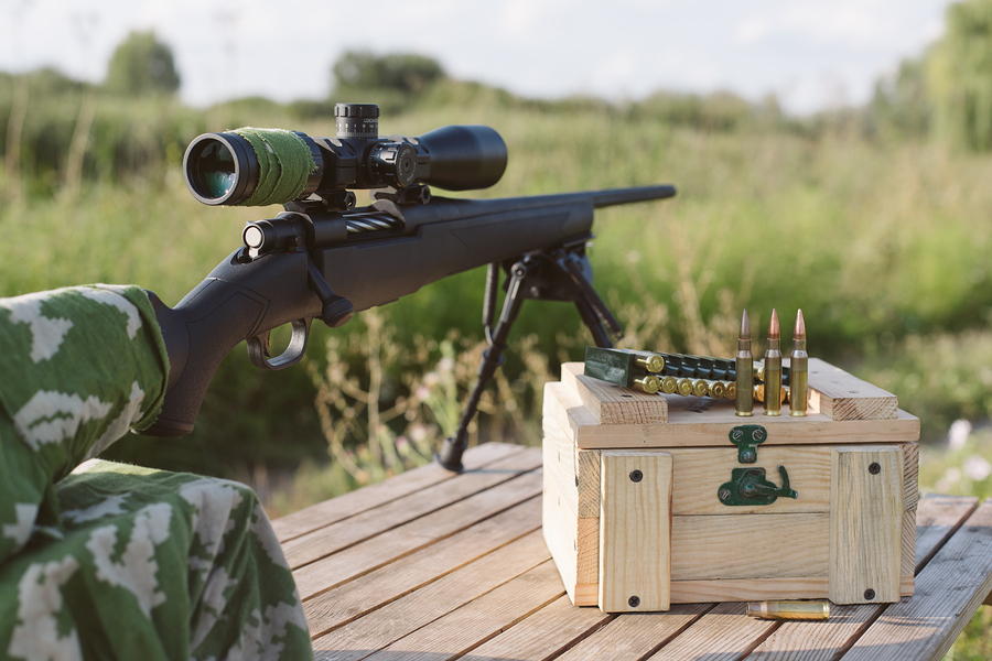Popular Rifle Scopes
